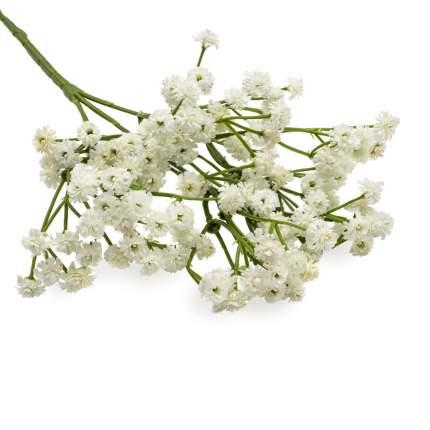Искусственные цветы Astra&Craft HY125-21001 белый