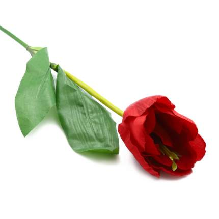 HY125-59006 Тюльпан, 46см (D Бордо)
