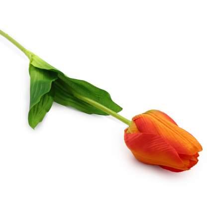 HY125-74002 Тюльпан, 62см (F Оранжевый)