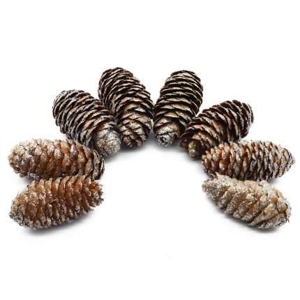 XY19-844 Шишки обработанные натуральные длина 6-8 см, ширина 3-4 см, 8шт/упак (Серебро)