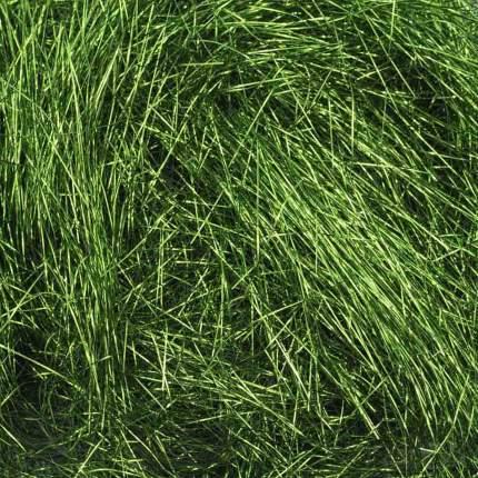 AR387 Наполнитель из шелковой бумаги 10гр (17 травяной)