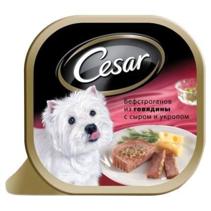 Консервы для собак Cesar, бефстроганов из говядины с сыром и укропом, 24шт, 100г