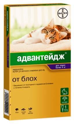 Капли для кошек против блох и вшей Bayer Адвантейдж 80K, от 4 кг, 1 пипетка, 0,8 мл
