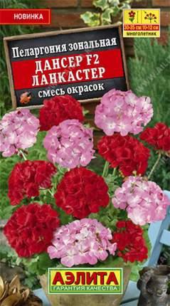 Семена Аэлита Пеларгония Дансер Ланкастер F2, Смесь, 5 шт.