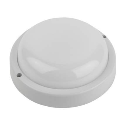 Светильник для ЖКХ ЭРА SPB-201-0-40К-012