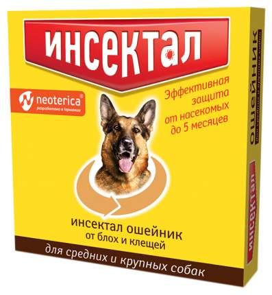Ошейник для собак против блох, клещей Инсектал для средних и крупных пород золотистый 65см