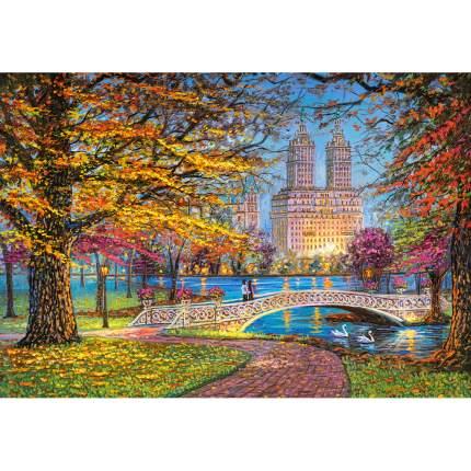 Пазл Castorland Центральный парк, Нью-Йорк, 1500 элементов