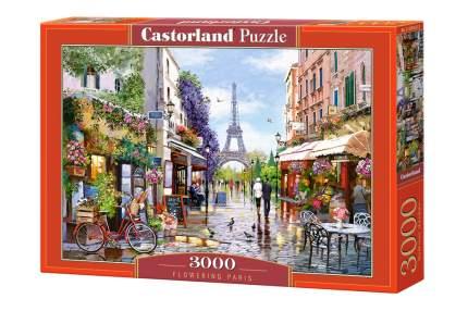 Пазл Castorland Парижская улица, 3000 элементов