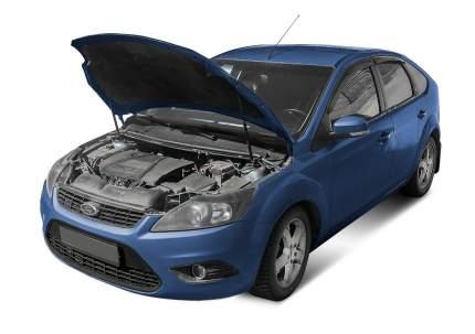 Упоры капота АвтоУПОР для Ford Focus II 2005-2008 2008-2011, 2 шт., UFDFOC013