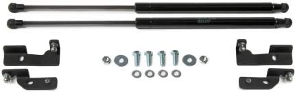 Упоры капота АвтоУПОР для Toyota Corolla X E140, E150 2012 2013, 2 шт., UTOCOR021