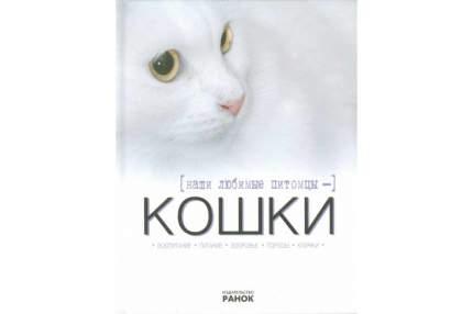 Наши любимые питомцы - кошки