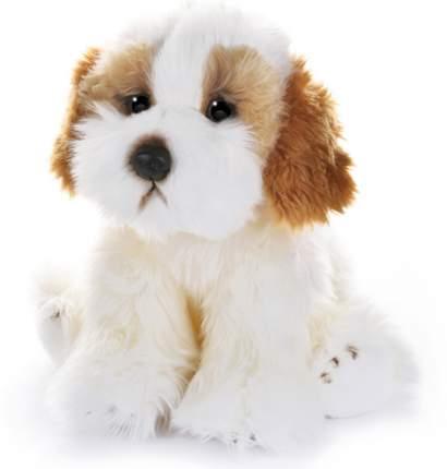 Игрушка мягкая Собака Кавашон, 30 см