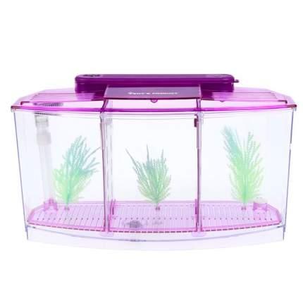 Отсадник для рыб Veny's,  трехсекционный с подсветкой и светящимися растениями, фиолетовый