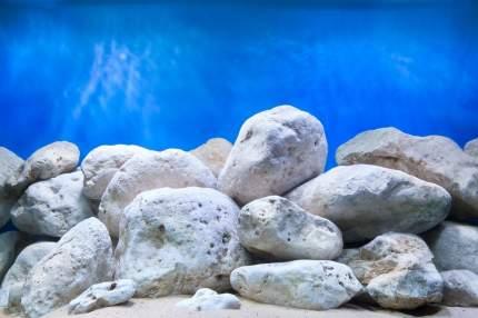 Аквариумный фон Barbus 016 двухсторонний Водный сад/Яркие камни 30 см/62 см
