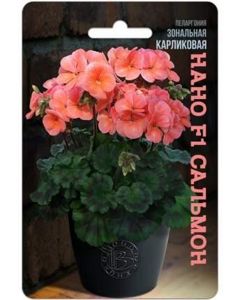 Семена БиотехНика Пеларгония зональная карликовая Нано Сальмон F1, 5 шт.