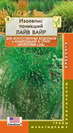 Изолепсис (камыш поникающий) Лайв Вайр, 3 мультидраже ColorGrass