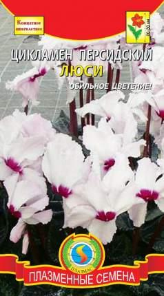 Цикламен персидский Люси, 3 шт.