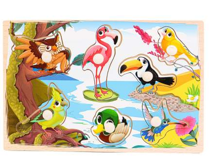 Деревянная рамка-вкладыш Птицы 22х14,5 см