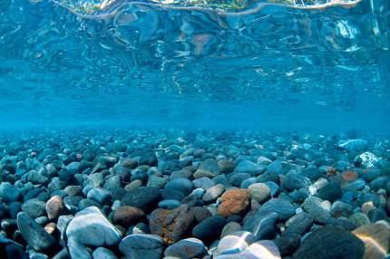 Фон для аквариума Barbus Горная река/Зеленое море, пластик, 62x30 см