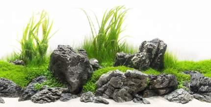 Аквариумный фон Barbus 041 двухсторонний Зеленый рай/Воды Амазонки 45 см/94 см