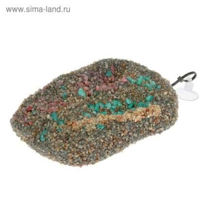 Плот для черепах Barbus Accessory 009 с присоской плавающий, пластик, 8х12х2 см