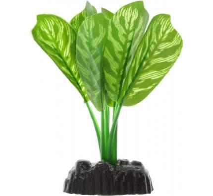 Растение для аквариума Barbus, шелк, Диффенбахия Plant 036, 10 см