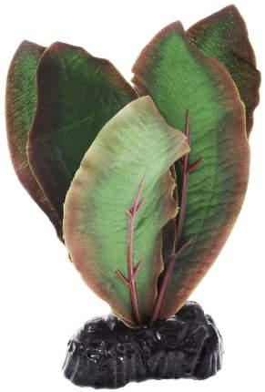 Растение для аквариума Barbus, шелк, Криптокорина Бекетти Plant 040, 10 см