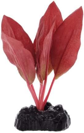Растение для аквариума Barbus, шелк, Криптокорина красная Plant 049, 10 см