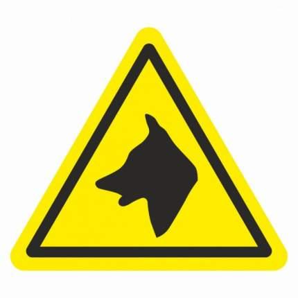 Знак W32 Осторожно. Злая собака 20х20