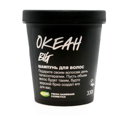 Шампунь для волос Big/Океан 330г