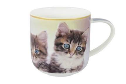 Carmani Кружка Два котенка с брелком-хвостиком (500 мл) CAR2-017-0021