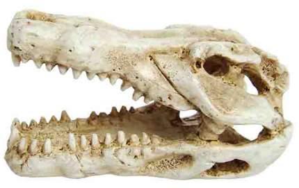 Декорация для аквариума Prime Череп крокодила, пластик, 4.5х7.5х4.5 см