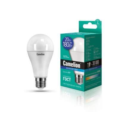 Лампа Camelion LED20-A65/865/E27