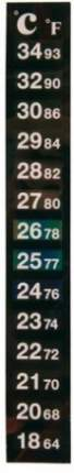Термометр для аквариума Trixie цифровой, на клеевой основе