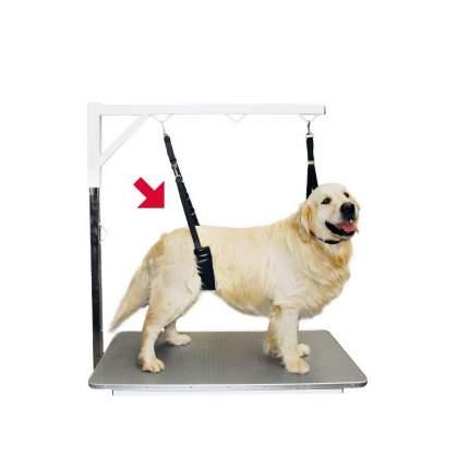 Ремень для удержания собаки Show Tech, размер Small