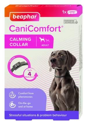 Успокаивающий ошейник для собак Beaphar Cani Comfort