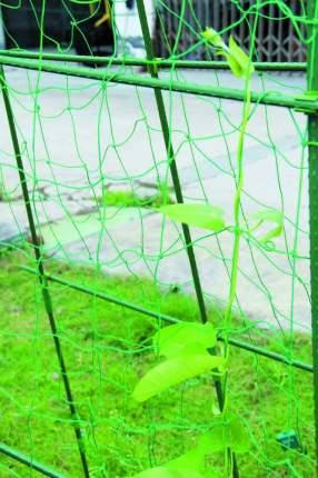 Опора для растений Green Apple GRNA_B0008307 180 см
