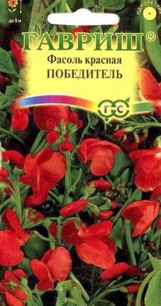 """Семена. Фасоль декоративная """"Победитель"""", 5 штук"""