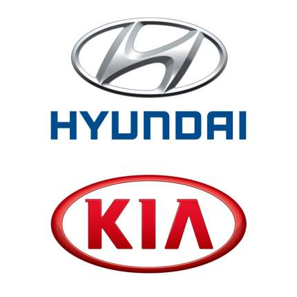 Сумка для хранения домкрата Hyundai-KIA 091491C001