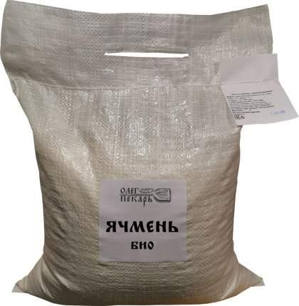 Зерно ячмень, БИО, 5 кг