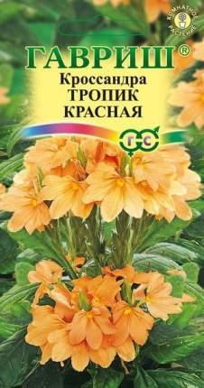 Семена цветов Гавриш Кроссандра Тропик красная 3 гранулы