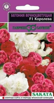 Семена цветов Гавриш Бегония Королева F1 вечноцветущая махровая смесь 4 шт. и в пробирке