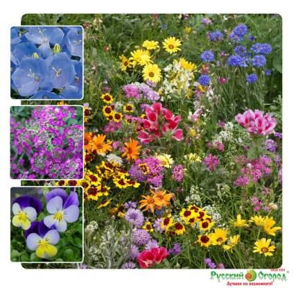 Семена газонных трав и сидератов Русский огород 841043 Газон цветущий Мини 120 г