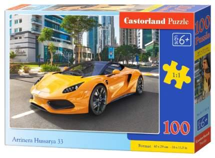 Пазл Castorland 100 Арринера, 100 деталей Premium, Castorland