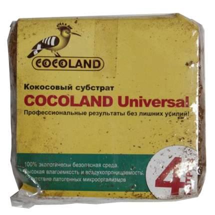 Субстрат для растений кокос Дом и Сад 7501-4л 0,4 кг