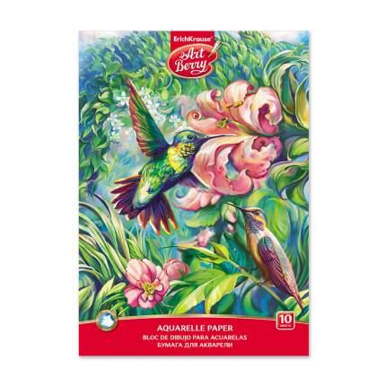 Альбом для рисования с бумагой для акварели на клею ArtBerry® Колибри, А4, 10 листов
