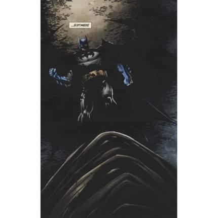 Комикс Бэтмен. Detective Comics. Леденящий ужас (мягк/обл.)