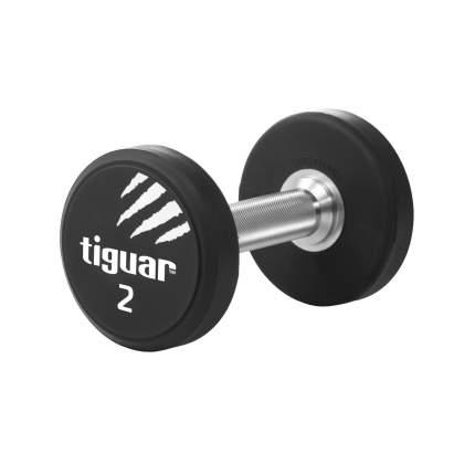 Пара  полиуретановых гантелей Tiguar 2 кг