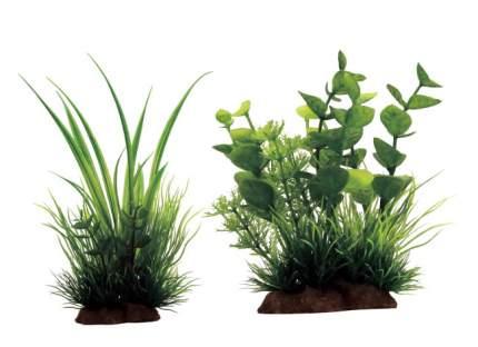Искусственное растение ArtUniq Acorus mix 20 12x10x20см + Bacopa mix 12 10x5x12см
