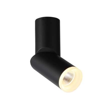 Светодиодный спот ST Luce Tortelle ST107.402.10